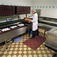 Tapis agroalimentaire